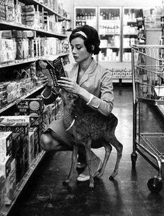 Audrey Hepburn grocery shopping with her fawn...glamorous.