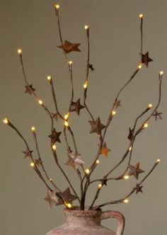 star light branches