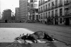 1936 Plaza de España, bombardeada, Madrid, 18.11.1936. Madrid, Spanish War, Barcelona, American Civil War, World War Ii, Chile, Pictures, Travel, Animals