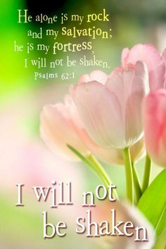 Truly my soul waiteth upon God: from him cometh my salvation. only is my rock and my salvation; he is my defence; I shall not be greatly moved. Biblical Quotes, Bible Verses Quotes, Bible Scriptures, Spiritual Quotes, Scripture Crafts, Godly Qoutes, Peace Quotes, Favorite Bible Verses, Trust God