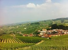 Bali News: The Piedmont of Perfection #Batasiolo #Wine #Dinner #Italy #BelaCucina