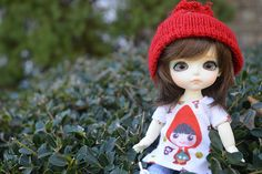 springy gnome | Lily | Flickr