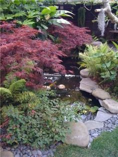 Pond Fountain and Garden Pond Landscaping Network Calimesa, CA , A beautiful water garden Waterfall Landscaping, Pond Landscaping, Hydrangea Landscaping, Backyard Water Feature, Ponds Backyard, Garden Ponds, Fountain Garden, Rocks Garden, Koi Ponds