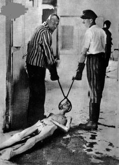 Survivors of the Dachau concentration camp demonstrate the operation of the crematorium by dragging a corpse toward one of the ovens. Dachau, Germany, April This saddens me greatly. Ppl forget about how the Nazi's treated ppl. Especially the Jews. Photo Choc, Lest We Forget, Don't Forget, World History, Jewish History, World War Two, Historical Photos, Interesting History, In This World