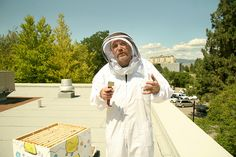 Honeybees atop Food Training #4 by Thompson Rivers, via Flickr  Thompson Rivers University in Kamloops, BC, Canada Rivers, University, Canada, Training, Cute, Photography, Food, Photograph, Kawaii