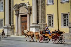 This is one of the fanciest way to explore a new city, especially when you're in a stylish one like Salzburg. New City, Salzburg, Austria, Lion Sculpture, Fancy, Statue, Explore, Stylish, Art