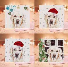 Golden Retriever Christmas Cards Luxury Christmas Cards, Golden Retriever Gifts, Red Envelope, Blank Cards, Beautiful Images, Labrador, Birthday Cards, Artsy, Puppies