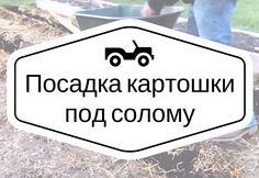 Предлагаем вашему вниманию подробный видеоролик о том, как можно посадить картофель под солому. Данная посадка принесет вам очень хороший урожай!