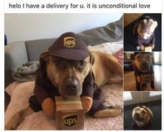 Unconditional love delivery