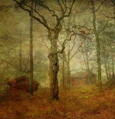darkface:  In the yellow mist I by ~ErebusOdora
