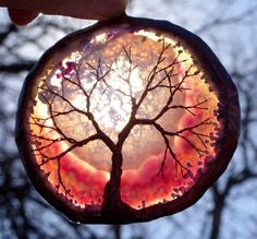 Copper Wire Tree Of Life Art Sculpture On A Pink Agate Stone Crystal Suncatcher VISIT MY ETSY FOR NEW ART PIECES!!! www.thewhispering... Thanks All! :)