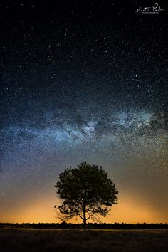 """Under the Milky Way - Under the Milky Way, the Netherlands. The Netherlands, not the best place for shooting the Milky Way. Lots of light pollution, but hey... at least we can see it here too. ;) <a href=""""http://facebook.com/martinpodtphotography"""">Facebook</a>   <a href=""""https://www.instagram.com/martinpodt/"""">Instagram</a>   <a href=""""http://fineartamerica.com/profiles/martin-podt.html"""">Fine Art America</a>"""