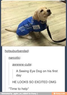 Aww im a guy and this is so cute that it nearly brought tears to my eyes.is that bad comment what u think pls Cute Funny Animals, Cute Baby Animals, Funny Cute, Animals And Pets, Hilarious, Cute Puppies, Cute Dogs, Cute Babies, Funny Shit