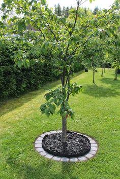 Organic Gardening Pest Control to Protect Your Plants Backyard Garden Design, Vegetable Garden Design, Garden Landscape Design, Lawn And Garden, Backyard Landscaping, Vegetable Gardening, Landscaping Around Trees, Garden Edging, Garden Pests