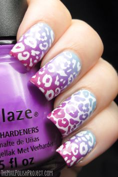 Cute leopard for spring