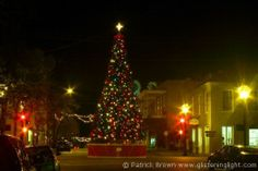 Christmas Holiday Season in Natchez, Mississippi. Here stands the city's Christmas Tree in the center of Main Street.