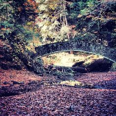 Bridge at Old Man's Cave in #HockingHills from jkguy23