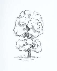 By Ein Östberg Inktober Dag 3.  #inktober #art #artwork #print #doodle #doodling #tree #sweden #målning #rita #teckning #teckna #måla #illustrate #illustrator #art #artwork #print #prints #wallart #sketch #sketching #sketchbook #trees #forest