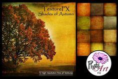 "TextureFX: Shades of Autumn (12""sq) Graphics This fine art texture set includes 12 high resolution textures 3600px x 3600px (12¡åx12¡å) @ 300ppi by PhotoArtFX"