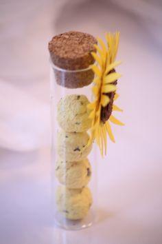 Provetta con bombe seminabili #seed paper #seed bomb
