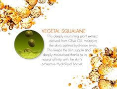 Vegetal Squalane is a key nourishing plant extract found in DECLÉOR's Micellar Oil, derived from Olive Oil, to maintain the skin's optimal hydration levels. This keeps the skin supple and deeply moisturised thanks to its natural affinity with the skin's protective Hydrolipid barrier. Olive Oil, Moisturizer, Therapy, Place Card Holders, Plant, Key, Natural, Board, Moisturiser