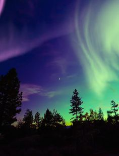 Gazing at the Alaskan sky will make you feel like you're in another world.                  Source: Shutterstock
