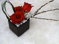 CdM mini Rosas