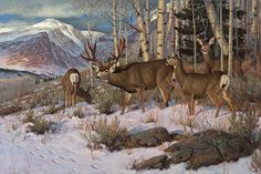 This mule deer painting features the High Uinta Mountains in Utah in the back ground. Available as Artist Proof (Edition size 250)