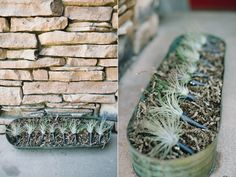 WICKED cool succulent boutonnieres!! // Romantic Pescadero Wedding