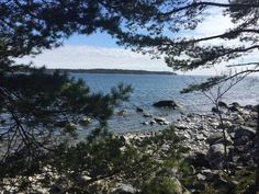 Strandvagen, Nynashamn: 9 Bewertungen und 8 Fotos von Reisenden. Strandvagen ist auf Platz 1 von 6 Nynashamn Aktvititäten bei TripAdvisor.
