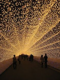 Tunnel of lights Japan