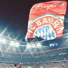 """105 ezer kedvelés, 167 hozzászólás – FC Bayern Official (@fcbayern) Instagram-hozzászólása: """" Allianz Arena - Floodlights -  @uefachampionsleague!  #packmas #FCBCEL #MiaSanMia #FCBayern…"""""""
