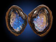 "Gem-Quality Opal Nodule Split ""book-style: ""Yowah Nut"""