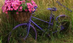 Bicycle Art IV by Roland Lavigne