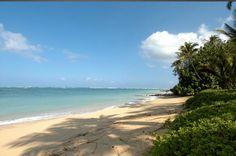 Beach near Kanaha, Spreckelsville, Maui