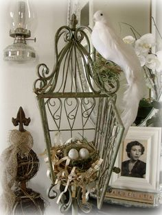 Nice display. I love old bird cages.