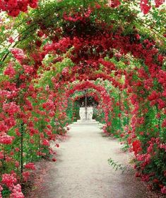 - Elena Bautista - English garden Pathways - 39 Canopies Plants Ideas Make Beautiful Garden. Beautiful Landscapes, Beautiful Gardens, Beautiful Flowers, Beautiful Beautiful, Garden Paths, Garden Landscaping, Garden Tips, English Garden Design, Garden Canopy