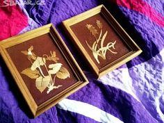Dva malé staré obrásky. Sušené květy. Cena - obrázek číslo 1