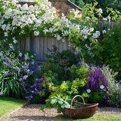 Take your garden to a higher dimension with walls of foliage and colour