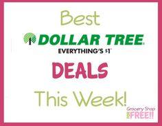 Best Deals At Dollar Tree!
