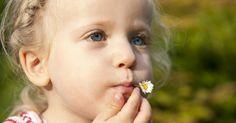 In Kindergärten ist die richtige und für die Kinder ungefährliche Pflanzenauswahl ein Muss. Doch gerade in Hausgärten wachsen oft viele giftige Stauden und Gehölze. Wir haben einige Ideen zusammengetragen, wie Sie einen Garten mit kinderfreundlichen Pflanzen gestalten können.
