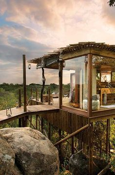 Kingston Treehouse on an African Safari in the Sabi Sand, amazing!