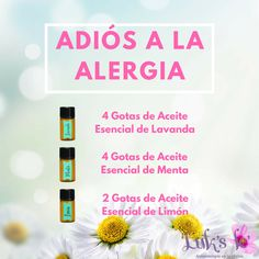 Essential Oil Starter Kit, Essential Oils Guide, Essential Oil Blends, Young Living Diffuser, Young Living Oils, Young Living Essential Oils, Essential Oil For Circulation, Esential Oils, Doterra Essential Oils