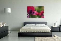 Kauf 'Blüten Detail' von Tanja Riedel auf Leinwand, Alu-Dibond, (gerahmten) Postern und Xpozer.