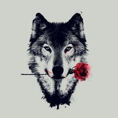 #spacer by wolf.kiba.inuzuka