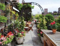 Die 129 Besten Bilder Von Kreative Dachgarten Rooftop Gardens