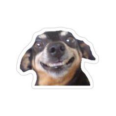 Stickers Kawaii, Meme Stickers, Tumblr Stickers, Cool Stickers, Printable Stickers, Laptop Stickers, Funny Phone Wallpaper, Cute Chibi, Aesthetic Stickers