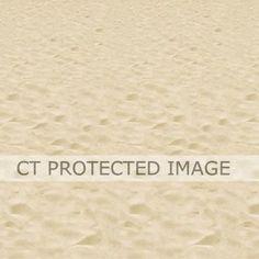 4ft X 30 Inch Beach Backdrop