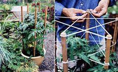 Tvinna ett perennstöd Potager Garden, Veg Garden, Garden Trellis, Edible Garden, Garden Planters, Garden Beds, Farm Gardens, Outdoor Gardens, Garden Structures