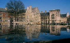 Yale University is a private institution that was founded in It has a total undergraduate enrollment of its setting is urban, and the campus size is 342 acres. It utilizes a semester-based academic calendar. College Years, College Campus, College Fun, Yale Law School, Voyage Usa, Ivy League Schools, First University, Harvard University, Top Universities